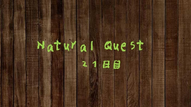 Natural Quest21日目