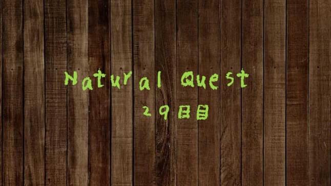 Natural Quest29日目