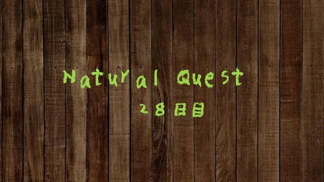 Natural Quest28日目